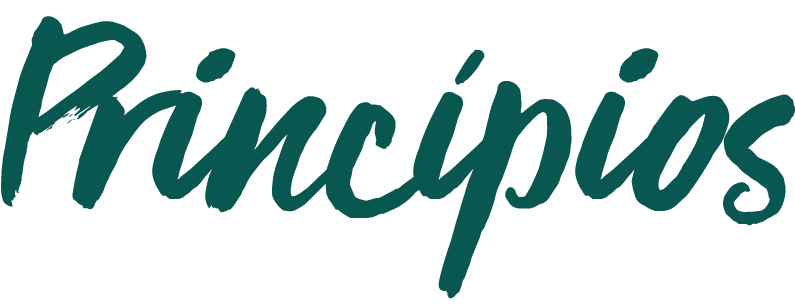 Principios-24